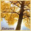 аватары: Осеннее дерево