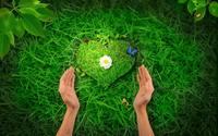 аватары: сердце из травы и руки обнимающие эту природу