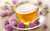 аватары: чай из цветов клевера