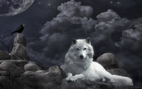 аватары: Волк и ворона