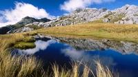 аватары: Сухая трава у озерца