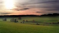 аватары: Свежая трава ранний весны на полях