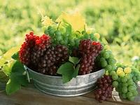 аватары: Тазик с виноградными гронами
