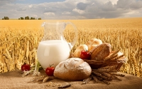аватары: На столе еда у пшеничного поля