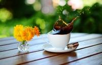 новинка Всплеск кофе и цветочки желтые