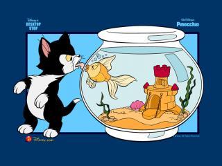 обои Пиноккио (Pinocchio, 1940). Кот и рыбка фото