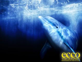 обои Ecco- The Dolphin Defender of the Future фото