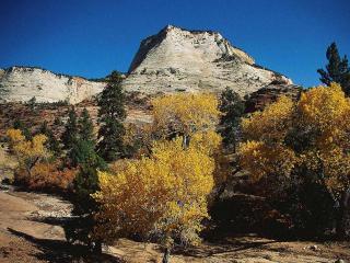 обои Осенний пейзаж фото