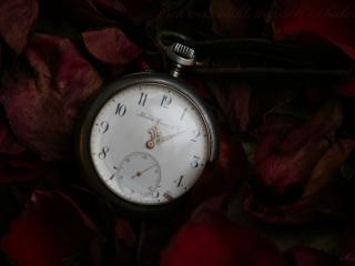 обои Старинные часы фото