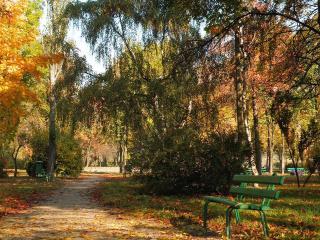 обои Натуральная красота - лавочки в парке фото