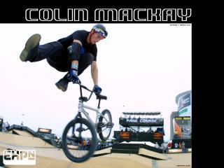 обои Colin Mackay фото