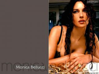 обои Monica Bellucci фото