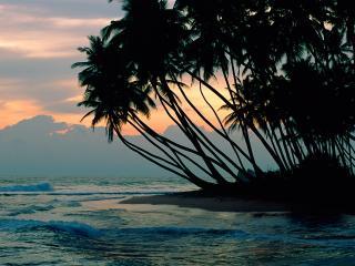 обои Коломбо. Шри-Ланка фото