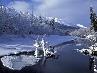 обои Eagle River фото