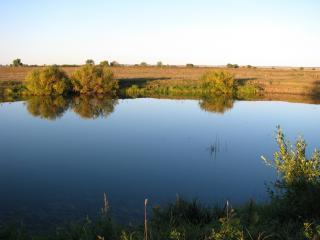 обои Тихий осенний пруд, у просторного поля фото