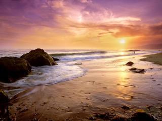обои Пляж Зума фото