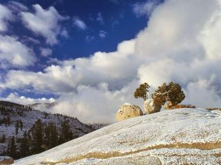 обои Весенний снег фото