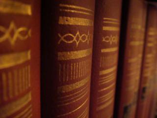 обои Древние книги фото