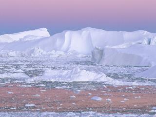 обои Айсберги в Гренландии фото