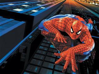 обои Spiderman  на стене фото