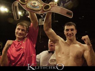 обои Братья Кличко фото