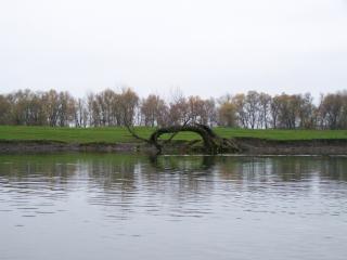обои На реке Лопань фото