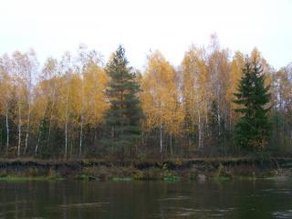 обои Осенью на реке под Харьковом фото