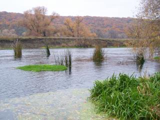 обои Прекрасный вид реки Лопань фото