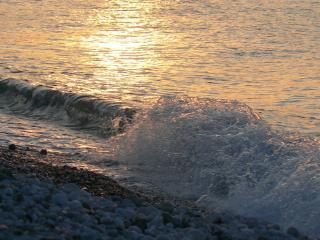 обои Волны моря утром фото