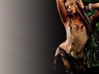 обои Shakira No фото