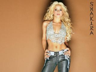 обои Shakira Underneath Your Clothes фото