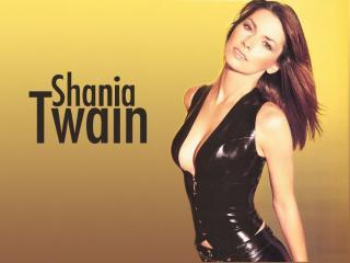 обои Shania Twain Ka Ching фото