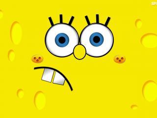 обои Sponge Bob фото