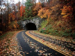 обои Blue Ridge Parkway, Pisgah National Forest, North Carolina фото