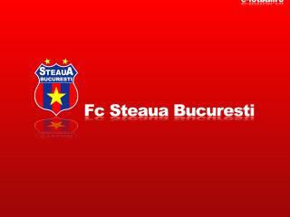 обои FC Steaua Bucaresti фото