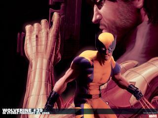 обои Wolverine in february фото