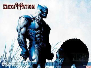 обои Wolverine in november фото