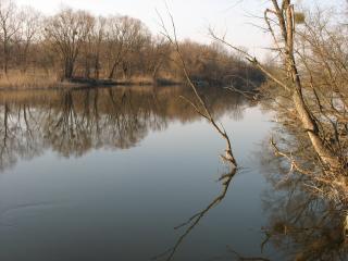 обои Река Северский Донец , район Гинеевки Харьковской обл фото