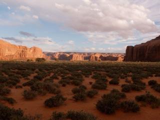 обои Пустыня вечерком фото