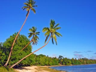 обои Пляж в Вануату фото