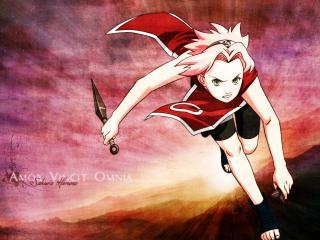 обои для рабочего стола: Haruno Sakura in red