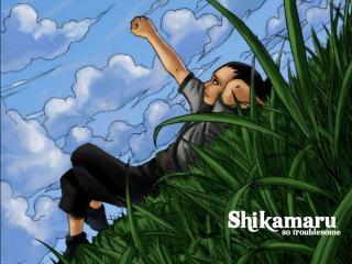 обои Nara Shikamaru so troublesome фото