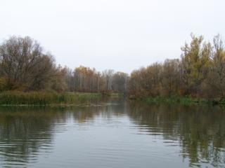 обои Река Лопань фото