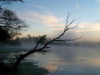 обои Туманная дымка над рекой фото