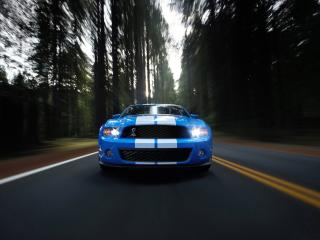 обои Shelby GT500 Mustang Brue on road фото