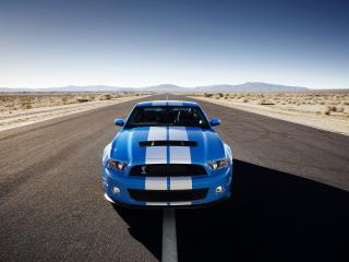 обои Shelby GT500 Mustang on road фото