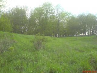 обои Зелёный склон фото