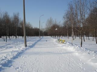 обои Снежный путь фото