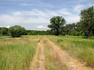 обои Дорога вдоль реки фото