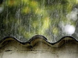 обои Во время дождя фото